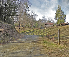 Annie's Drive (wildrosetn39) Tags: horse mountain tree barn rural tn farm tennessee dirtroad oldbuilding townsend smokymountains greatsmokymountains richmountain dryvalley