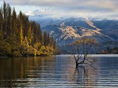 Lake Wanaka, NZ (Ian@NZFlickr) Tags: autumn lake nz otago aotearoa wanaka