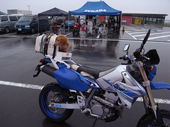 R0013245.JPG (cphousing) Tags: mvagusta fujispeedway fisco motocorse