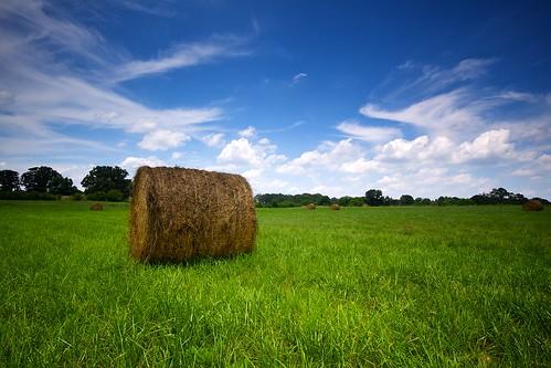 フリー画像| 自然風景| 草原の風景| 雲の風景| 干し草ロール|       フリー素材|