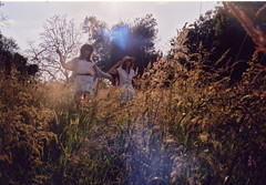 Summer field (Clotilde Boisrenard) Tags: film 35mm biarritz argentique wheatfield chinonflex