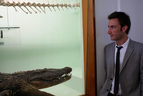 Bye Crocodile