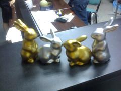 orgy (bingpogi) Tags: china rabbit bunny orgy kuneho
