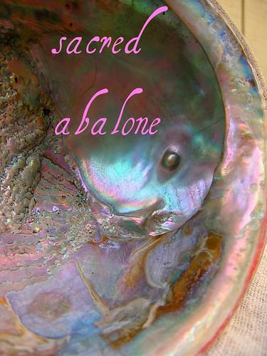 Sacred Abalone