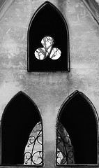 14 - 21 fvrier 2009 Crteil Cimetire Chapelles (melina1965) Tags: fab blackandwhite bw graveyard reflections nikon ledefrance noiretblanc graveyards crteil reflet february fabulous reflets 2009 ironworks fvrier cimetire valdemarne gr8 cimetary linescurves cimetires ferronnerie d80 cimetaries thisphotorocks checkoutmynewpics ouvrierdelimage umbralaward cameraobscuraworldwide