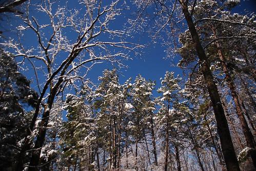 Snow Day '09 133