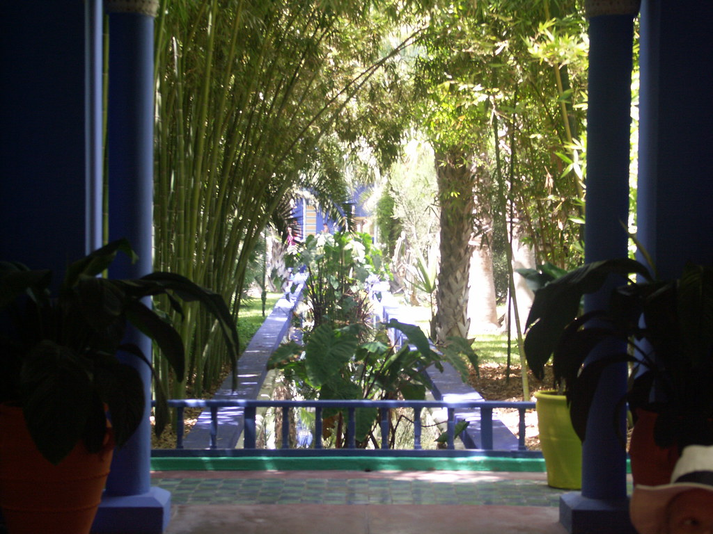 The Worlds Newest Photos Of Bassin And Majorelle Flickr