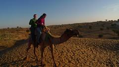 Camel Riders 3