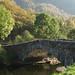 English countryside - England Study Abroad