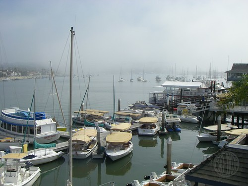 half foggy, half not