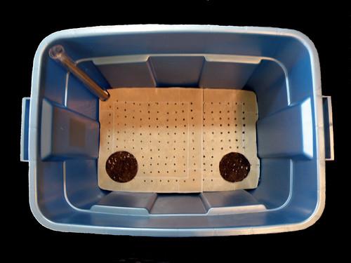 Sub-irrigated Grow Box
