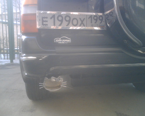 The 'Hello-Kitty' exhaust pipe