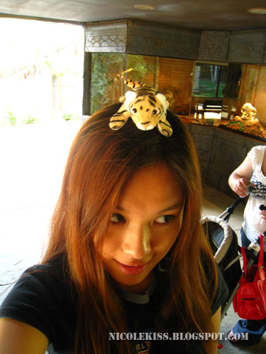 tiger hair accessory