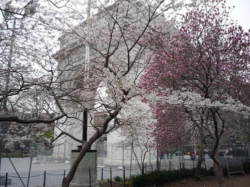 Washington Square Arch, April 10, 2009