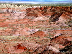 The Painted Desert (Robert Lz) Tags: arizona 28ft robertelzey robertlz thepainteddesert lexingtongtsbyforestriver apriltripwestinamotorhome forde450superduty rvtripwest