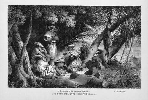 001e-Los Ríos Amazonas y Madeira 1875-Los indios Mojos desayunando