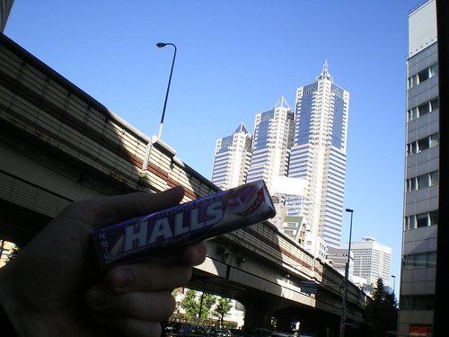 En primer plano unos Halls de mora; al fondo el Park Hyatt de Shinjuku