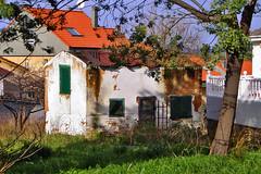 P1210018-chabola (pelz) Tags: espaa spain europa asturias oviedo chiringuito chabola