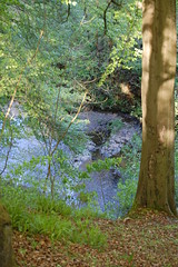 lynn falls from valley side (gordonjc) Tags: scotland falls lynn valley dalry ayrshire lynnglen northayrshire garnockvalley