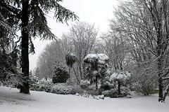 2009-01-06 039 (Dinolab) Tags: christmas winter snow turin landscapesdreams oneofmypics
