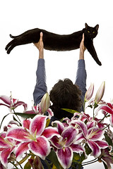 twenty of 52 (Orrin) Tags: flowers selfportrait cat blackcat mouse lenstagged ritual stretched canonef2470mmf28lusm 2470l 52 raised lifted fiftytwo elongated ritualistic orrin stargazers justplainstrange