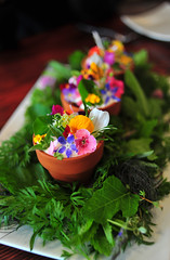14th Course: the SPRING FLOWER POT