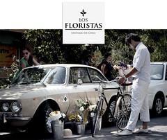Los Floristas (alzzio) Tags: chile santiago flores los romeo florist alpha providencia floristas