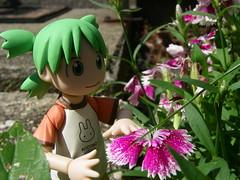 Yotsuba (Yoshi Gizmo) Tags: girl toy doll summervacation yotsuba revoltech