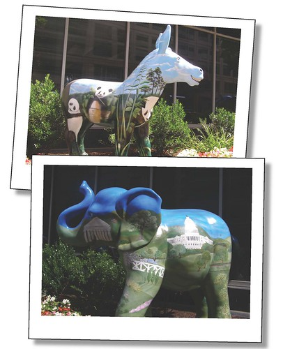 Donkey and Elephant pics_7