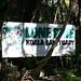 Lone Pine Koala Sanctuary_2