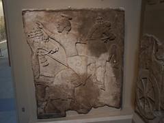 BM_ANE321 (sipazigaltumu) Tags: london museum ancient near antique east bm british mesopotamia basrelief reliefs assyrian antiquit ashurnasirpal antiquite ashurbanipal assurbanipal orthostat assurnasirpal orthostate tiglathpilesar tiglatpilesar tiglatpileser