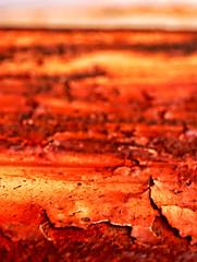 Mars (ewitsoe) Tags: seattle red mars macro weird nikon rust northwest bokeh barrels flake georgetown scifi pacificnorthwest pnw corrosion chemical corrode abrasion d80