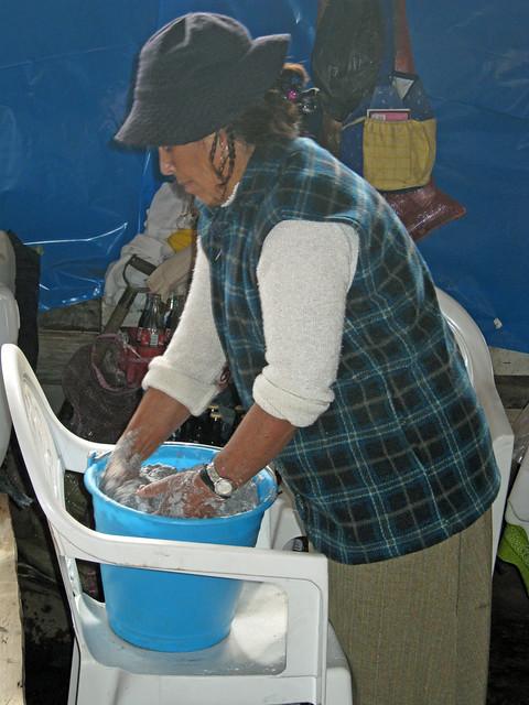 bouiboui dans la reseve des Monarcas, Michoacan fev 2009