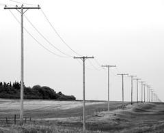 Straight on (sandrine L.) Tags: road bw canada vanishingpoint geometry saskatchewan greatprairies