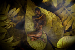 Nature Boy (Shan Sheehan) Tags: nature beauty leaves nude miniature surreal enchanted natureboy