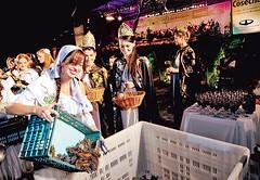 En la Fiesta de la Vendimia esperan a 500 mil visitantes