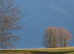 Dark cloud (SteenT) Tags: spring bluesky steentalmark talmark