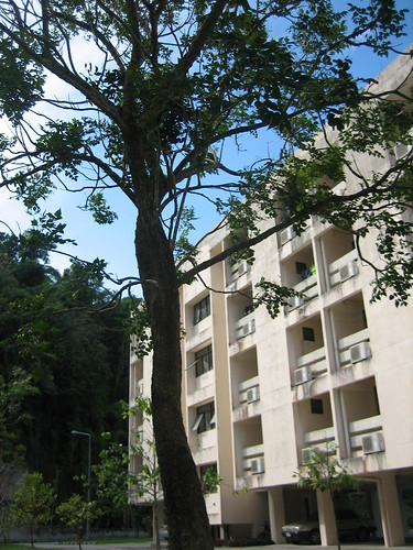 Phuket Campus