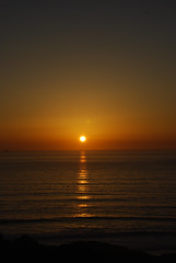 Sunset over the Pacific Ocean (Natasha Lloyd) Tags: sunset pines torrey