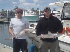 hard core shark fisherman by Channelmaster Sportfishing