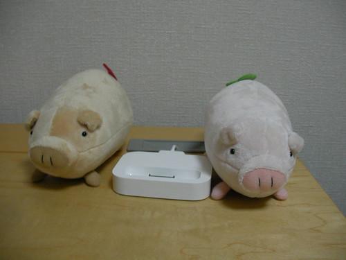 iPod photo 用の Dock とぶたさん2匹