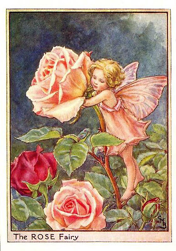 010-rose_flower_fairy