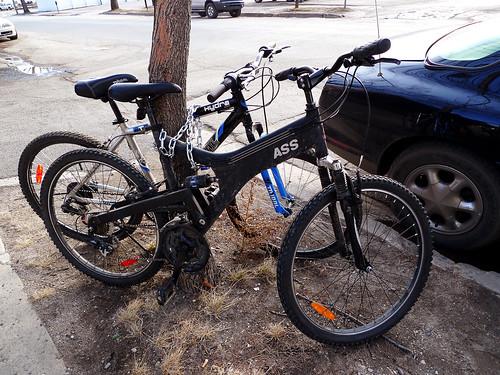 Ass Bike