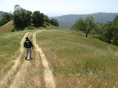 Russ walks a crooked mile (Madrone Soda Springs (historical), California, United States) Photo