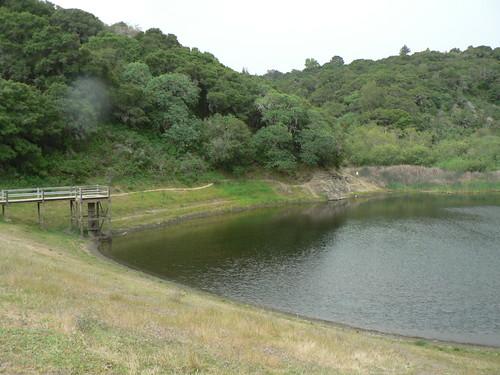 Water Dog Park Belmont