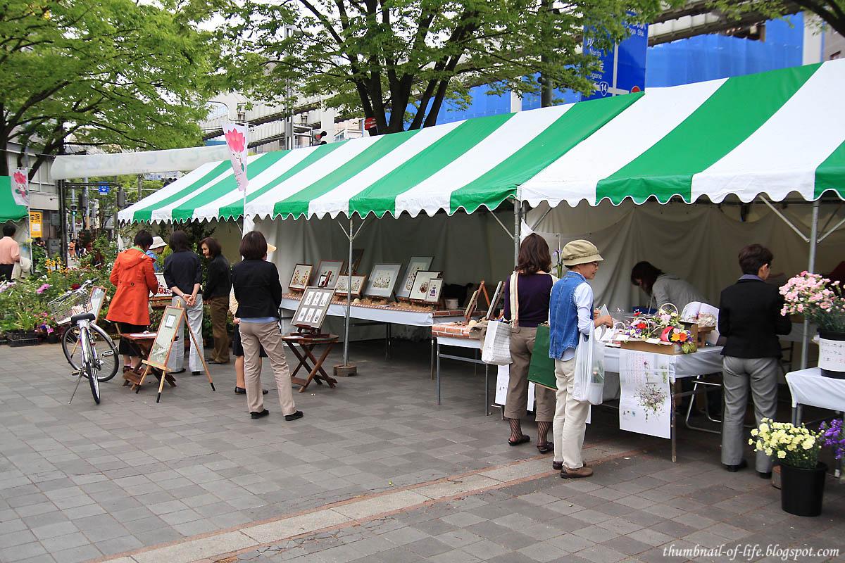 Flower Festival 2
