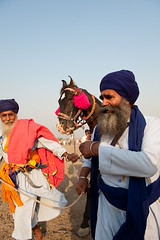 Jolly Old Fellas (gurbir singh brar) Tags: horse singh brar gurbir nihangs harike gurbirsinghbrar bidhichand