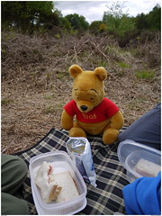 Picnic (éric) Tags: sussex pooh ashdownforest imagemagick uploadscript im:opts=rotate270 photo:id=p1010244jpg