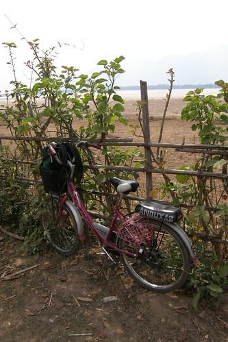 113.在Don Daeng騎腳踏車