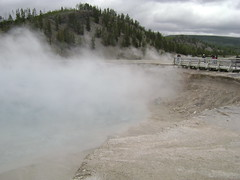 WY_yellowstone_springsandcraters 047 (thechubbybunny) Tags: craters yellowstonenationalpark yellowstone wyoming bacteria hotsprings thermophiles bacteriamats